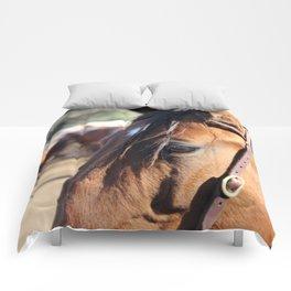 Horse-1 Comforters