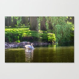 In the old park Canvas Print