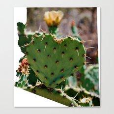 Sonoran Love / Arizona Canvas Print