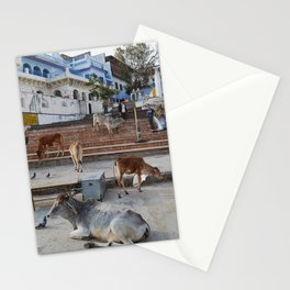Púshkar, Rajastán, India Stationery Cards
