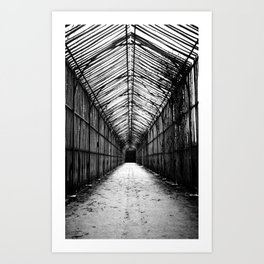This way to the Greenhouse Art Print