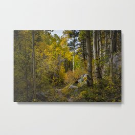 Fall, Sangre de Christo Mountains Metal Print