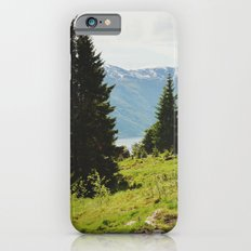 the forest and the fjords iPhone 6s Slim Case