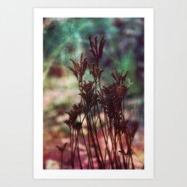 Autumn plants #artistic #photography Art Print