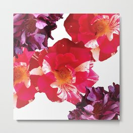 Roses Beautiful and Jazzy Metal Print