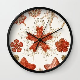 Starfish Vintage Illustration Wall Clock
