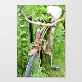 Deer Isle Series: Go Green II Canvas Print