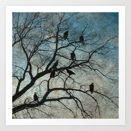 American Bald Eagles Roost Silhouette  Art Print