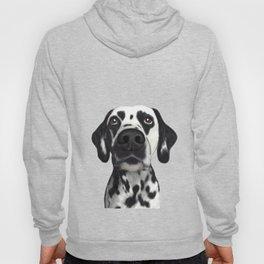 Sad dalmatian Hoody