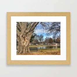 Heart Tree at Lagoon Framed Art Print