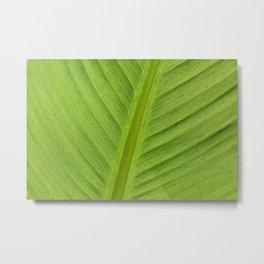 Banana Leaf Bright Green Lines Metal Print