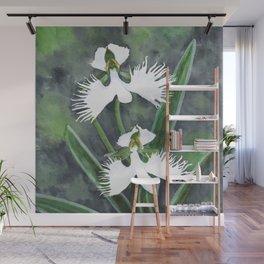 Habenaria radiata white egret orchids flowers Wall Mural