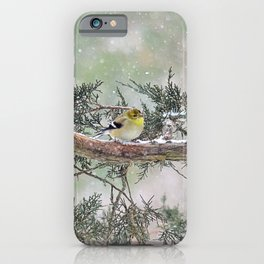Two Finches in a Snowstorm iPhone Case