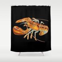 maine Shower Curtains featuring Maine Lobster by Tim Jeffs Art