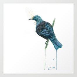 The Parson Bird aka Tui Art Print