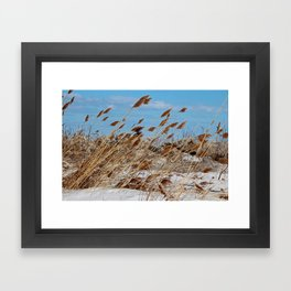 Tame a Wild Wind- horizontal Framed Art Print