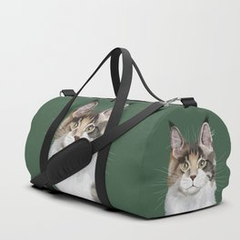 Maine Coon in Green Duffle Bag