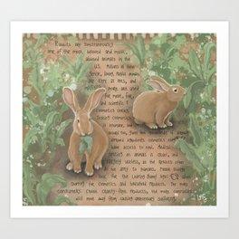Rabbits 1 Art Print