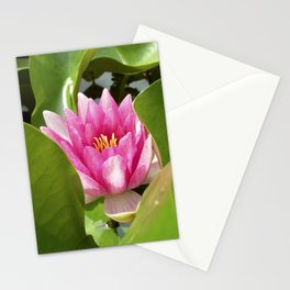water lily XI Stationery Cards