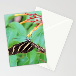 The zebra longwing butterfly Stationery Cards