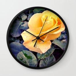 Raindrops On Roses Wall Clock