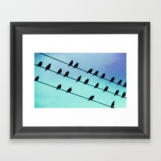 Birds & Lines #2 Framed Art Print