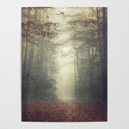 hOme - misty forest path Poster