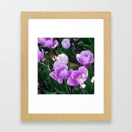 JC FloralArt 05 Framed Art Print