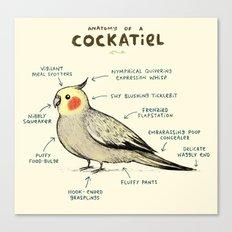 Anatomy of a Cockatiel Canvas Print