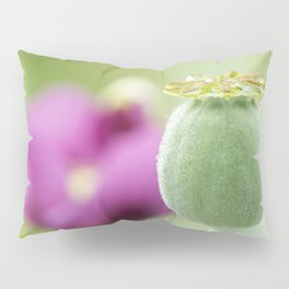 Hungarian Blue Bread Seed Poppy | Seed Pod Alternate Perspective Pillow Sham