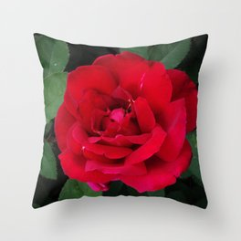 Single Red Rose 2 Throw Pillow