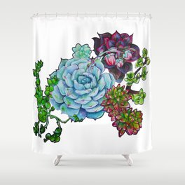 Sweet Succulents Shower Curtain