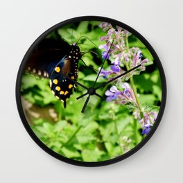Pipevine Swallowtail 2 Wall Clock