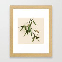 A grasshopper on bamboo leaves Framed Art Print