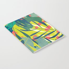 Eden Notebook