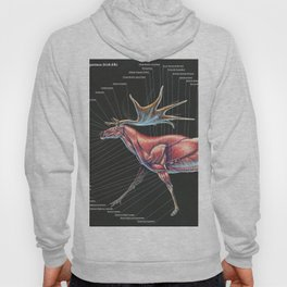 Megaloceros Giganteus Muscle Study Hoody