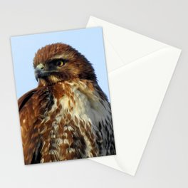 Young Prince of the Skies Stationery Cards