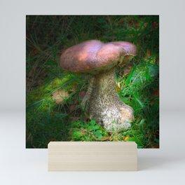 Penny Bun Fairy Mushroom Mini Art Print