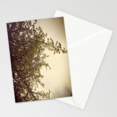 Sunlight & Branches Stationery Cards