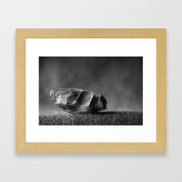 wrapped up fly Framed Art Print