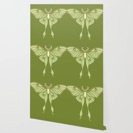Luna Moth Wallpaper