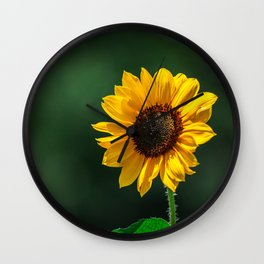 The Sun In Nature Wall Clock