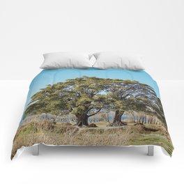 Twin Trees Comforters