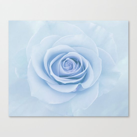Soft Baby Blue Rose Abstract Canvas Print