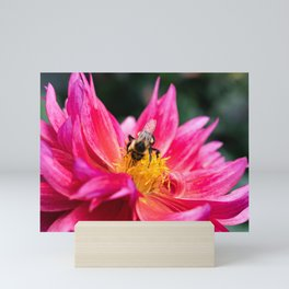 The Bee and the Flower Mini Art Print