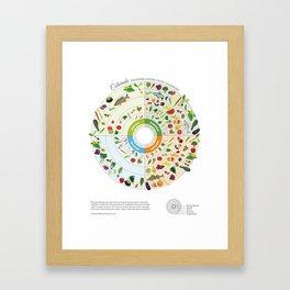 Colorado Seasonal Local Food Calendar Framed Art Print
