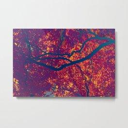 Arboreal Vessels - Carotide Metal Print