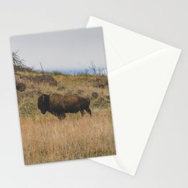 Stand Steady - Bison, Oklahoma Stationery Cards