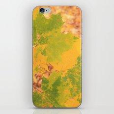 Eco daydreaming  iPhone & iPod Skin