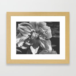 B&W Ballerina Flower Framed Art Print